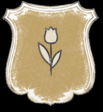 Tulipano di Ponente